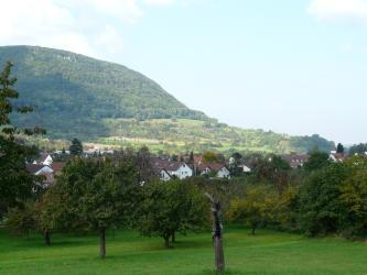 Über einer Obstbaumwiese sowie dahinter liegender Ortschaft erhebt sich im Hintergrund ein zunächst flacher, nach links hin jedoch bald steil ansteigender, bewaldeter Hang.