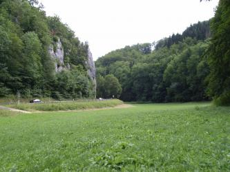 Das Bild zeigt die Biegung einer Straße in ein schmales, zu beiden Seiten bewaldetes Tal. Links ragen auch Felsen aus dem Waldhang hervor. Im Vordergrund breitet sich Grünland aus.