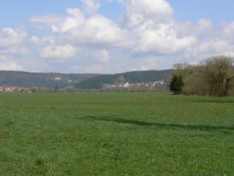 Das Bild zeigt eine weite Wiesenlandschaft mit einer kleinen Baumgruppe rechts. Im Hintergrund sind zwei Ortschaften sowie teils felsige, steile Höhenzüge erkennbar.