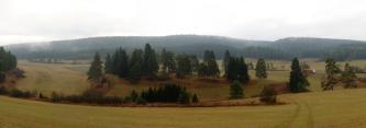 Das Panoramabild zeigt unterhalb einer Wiese und inmitten weiterer Grünflächen eine ovale, von Hecken und Nadelbäumen bewachsene inselartige Erhebung mit Resten von braunem, ungemähtem Gras. Links und rechts sind ähnliche Inseln erkennbar.