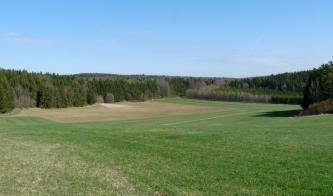 Vor durchgehendem, klar abgegrenztem Wald breiten sich Acker- und Grünlandflächen aus, nach rechts und zum Vordergrund hin ansteigend.