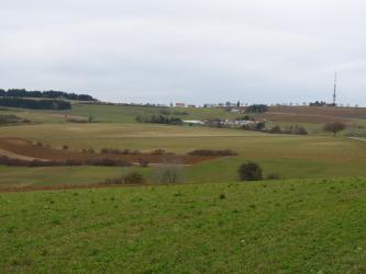 Das Bild zeigt eine zum Horizont hin ansteigende, gewellte Nutzlandschaft mit einer kahlen Erhebung rechts und einer bewaldeten Kuppe links.