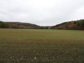 Das Bild zeigt flache, steinige Ackerböden, die bis zum Hintergrund reichen. Bewaldete, von der Mitte ausgehende Hänge begrenzen die Äcker.