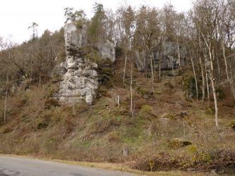 Das Bild zeigt einen nahe einer Straße aufsteigenden, teils mit schlanken Bäumen bewachsenen Hang. Links von der Mitte springt ein weißlich grauer Felsturm hervor, rechts ist ein kleinerer Fels von Bewuchs verdeckt.