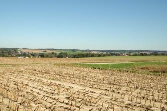 Blick über Stoppelfelder auf eine Senke mit Bäumen und eine leichte Erhebung dahinter, welche ebenfalls mit Feldern bedeckt ist.