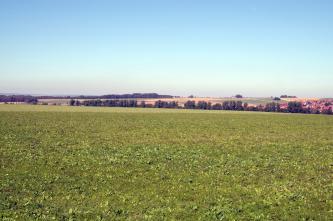 In der unteren Bildhälfte befindet sich eine Wiese, dahinter erstreckt sich eine flache Landschaft mit Baumgruppen und rechts einer Siedlung.