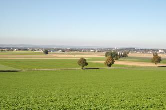 Blick üner eine Ebene. Im Vorder- und Mittelgrund sind Felder zu sehen, dahinter befinden sich Siedlungen. Am Horizont erhebt sich im Dunst eine Bergkette.