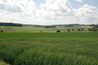Der Vordergrund des Bildes ist ausgefüllt von einer hochstehenden Wiese. Dahinter schließt sich ein flacher Grünstreifen an. Zum Hintergrund hin folgen ansteigende Grün- und Ackerflächen.