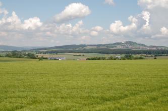 Blick über eine große Wiese auf einen sich im Hintergrund des Bildes erhebenden, teilweise bewaldeten Hügel. Der Himmel ist stark bewölkt.