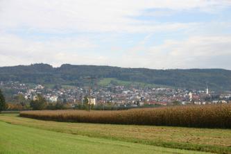 Blick über Wiesen und bepflanzte Äcker auf einen Berg, dessen Hänge sowohl dicht besiedelt als auch bewaldet sind.