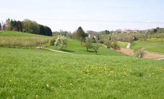 Blick auf ein von Hügeln umgebenes Tal mit blühenden Wiesen, Bäumen und einem einzelnen Acker. Im Hintergrund rechts sind Gebäude erkennbar.