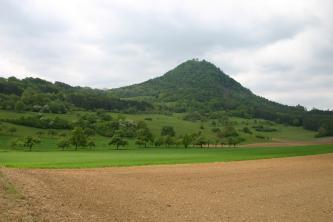 Blick über Äcker und Wiesen mit vereinzelten Bäumen auf einen bewaldeten Vulkankegel.
