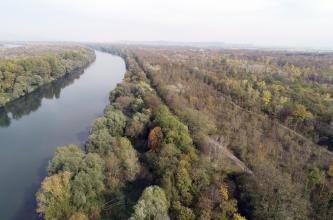 Von hoch oben blickt man auf weite Wald- und Gehölzflächen, die bis zum Horizont reichen. Links unterbricht ein ruhiger Fluss die Waldungen. Im dunstigen Hintergrund sind abgestufte, flache Berge erkennbar.