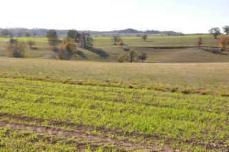 Im Vordergrund verlaufen Äcker mit noch frischem Grün. Dahinter folgen hügelige Wiesen mit einzelnen Bäumen. Im Hintergrund sind die Hügel bewaldet.