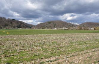 Das Bild zeigt weite, flache Wiesen und Äcker, im Vordergrund mit Getreidestoppeln. Im Hintergrund, unter dunklen Wolken, erheben sich drei bewaldete, braun gefärbte Berge.