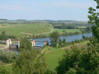 Von erhöhtem Standort aus blickt man über Baumwipfel auf eine flachhügelige Landschaft mit Wiesen, Äckern, Wald- und Rebflächen. Ein Fluss, links unterbrochen von einer Doppelschleuse, durchschneidet diese Landschaft von links nach rechts.