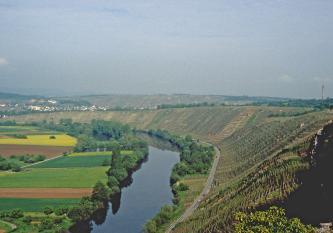 Das Bild beherrschend sind steile Rebhänge, die sich vom linken Hintergrund bis nach rechts vorne, dem Betrachter entgegen, ausbreiten. Unterhalb der Hänge folgen ein Fluss sowie eine Straße dem Bogen der Rebflächen. Links des Flusses liegen Äcker.