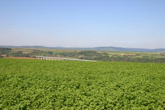 Zwischen einem hochgewachsenen Pflanzenfeld und einem fast wolkenlosen Himmel dehnt sich ein schmaler Streifen Landschaft aus, mit Feldern, Wiesen, Wald und einer modernen Eisenbahnbrücke. Im Hintergrund nach rechts ansteigende, bewaldete Berge.