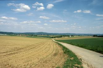 Links eines schmalen Fahrweges ziehen sich hellbraune, mit Setzlingen bedeckte Äcker zum seitlichen Bildrand hinauf. Rechts des Weges liegt ebenfalls leicht ansteigendes Grünland. Dahinter bildet das Gelände eine Mulde, auf die bewaldete Höhen folgen.