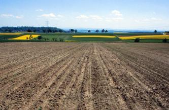 Von einem vertikal gefurchten braunen Acker, der den ganzen Vordergrund einnimmt, geht der Blick abwärts auf bereits bewachsene, grün und gelb gefärbte Felder.