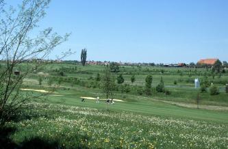 Zwischen einer blühenden Wiese im Vordergrund und einem terrassierten grünen Hang im Hintergrund verläuft ein Golfplatz.