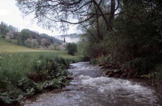 Das Bild zeigt einen schnell fließenden, vom Betrachter wegführenden Bach. Rechts ist das Ufer dicht mit Bäumen und Buschwerk bewachsen, links gibt es großblättrige Pflanzen und Gras. Dahinter zeigen sich die Spitze eines Kirchturms sowie bewaldete Hänge.