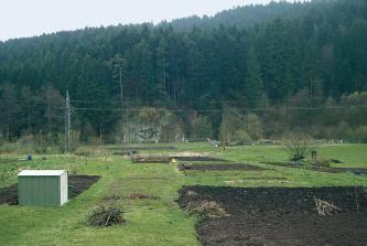 Auf einer bewirtschafteten Wiese sind mehrere schwarzbraune, rechteckige Bodenstücke aufgelassen. Im Hintergrund mittig ist eine Felswand erkennbar; umgeben von dichtem, ansteigendem Wald.