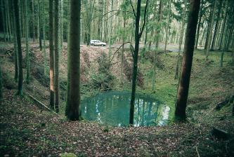 Das Bild zeigt eine trichterförmige Vertiefung mitten in einem Nadelwald, die mit dunkelgrünem Wasser gefüllt ist. Die Stämme sind schlank und hoch und stehen um den See locker, im Hintergrund dicht zusammen. Auch Unterholz und ein Fahrweg sind zu sehen.