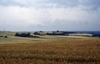 Hinter einer flachen, bepflanzten Ackerfläche im Vordergrund breiten sich weitere, leicht nach hinten ansteigende Nutzflächen aus.  Diese sind mehrfach von dünnen Stein- und Baumstreifen unterbrochen.