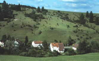Hinter ein paar Häusern im Vordergrund erhebt sich ein steiler, gefurchter grüner Hang. Oberhalb eines horizontal verlaufenden Knickes verteilen sich Büsche und Bäume. Auf der Kuppe links ist der Bewuchs auch dichter.