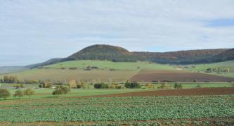 Eine bewaldete und teils langgestreckte, teils runde Erhebung bildet den Mittelpunkt des Fotos. Darunter dehnen sich Hänge mit Grünland- und Ackerflächen aus, durchquert von Straßen. Im Vordergrund liegt ein bepflanzter Acker.