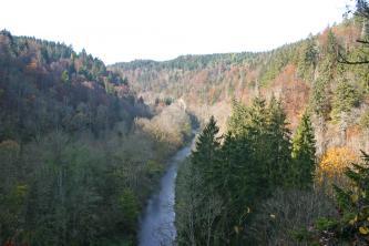 Blick von oben über Baumwipfel auf ein enges, von bewaldeten Berghängen eingerahmtes Tal. Im Zentrum des Tales fließt ein schmaler Fluss.