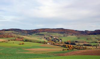 Das Bild zeigt eine sehr wellige, hügelige Grün- und Ackerlandschaft. Rechts windet sich eine von Bäumen gesäumte Straße die Hügel hinauf. Im Hintergrund sind die Hügelkuppen höher und bewaldet.