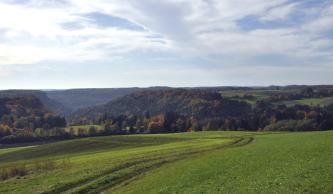 Über gefurchte und gedüngte Grünflächen im Vordergrund blickt man links auf ein bewaldetes Tal. Rechts sind oberhalb des Waldes hochliegende Grün- und Ackerflächen erkennbar.
