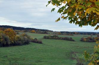 Das Bild zeigt eine leicht nach rechts geneigte Grünlandschaft mit Ackerflächen im Hintergrund. Vorne links sowie im Mittelgrund sind Gehölzstreifen zu sehen, die auf Steinhügeln wachsen.