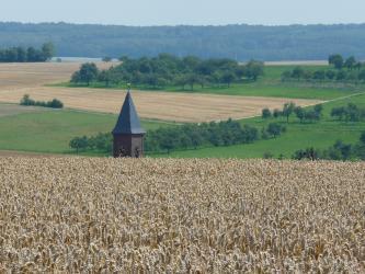 Das Bild zeigt im Vordergrund ein hochliegendes, reifes Getreidefeld. Dahinter ragt eine Kirchturmspitze empor. Im Hintergrund verteilen sich Acker- und Grünlandflächen, Obstbäume und Wald.