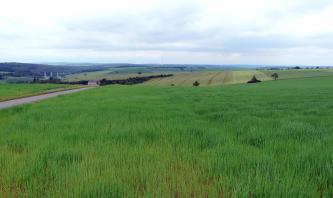 Das Bild zeigt hochgelegene, zur Mitte hin eine Mulde bildende, mehrheitlich begrünte Flächen. Links im Hintergrund ist ein bewaldeter Hang erkennbar sowie davor eine Autobahnbrücke.