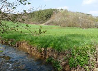 Das Bild zeigt vorne links einen im Bogen verlaufenden Bach, dessen Ufer erst mit Gras, dann von begrünten Ackerflächen gesäumt wird. Im Hintergrund erhebt sich ein teils mit Bäumen, teils mit Gebüsch bewachsener Hügel.