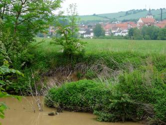 Das Bild zeigt das dicht bewachsene, hohe Ufer eines braunes Wasser führenden Flusses. Im Hintergrund ist eine größere Ortschaft zu sehen; dahinter eine Hügellandschaft.