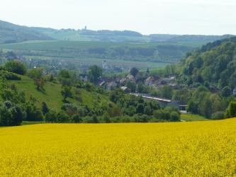 Blick über ein hoch gelegenes gelbes Rapsfeld auf eine zwischen teils grünen, teils bewaldeten Hängen liegende Ortschaft. Im Hintergrund ist eine abgestufte Hochfläche erkennbar, mit Waldstreifen, Grünland- und Ackerflächen.
