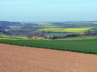 An einen rotbraunen Acker im Vordergrund schließen sich grüne und gelbe, meist flache Äcker an. Die Landschaft liegt dabei in der Bildmitte tiefer und ist von Baumstreifen durchzogen.