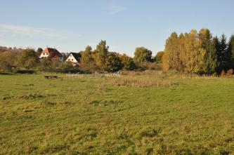 Das Bild zeigt eine bräunlich grüne Grasfläche mit vereinzeltem Buschwerk. Im Hintergrund versteckt sich eine Siedlung hinter Bäumen.