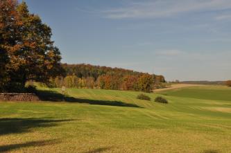 Das Bild zeigt wellige, ausgedünnte grüne Äcker mit herbstlich gefärbten Waldstreifen als Begrenzung. Im Vordergrund links wirft ein größerer Baum Schatten.