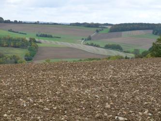 Blick über einen sehr steinigen braunen Acker auf eine wellige, nach links und rechts ansteigende Ackerlandschaft mit Baumgruppen links sowie Waldflächen rechts und im Hintergrund.