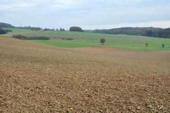 Ein nach rechts geneigter, gewellter brauner Acker breitet sich im Vordergrund aus. Im Hintergrund sind begrünte Flächen zu sehen; links zudem Gehölz. Rechts folgt ein flacher, bewaldeter Hügel.