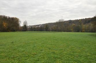 Das Bild zeigt im Vordergrund eine flache grüne Wiese mit angrenzendem Wald sowie einem bewaldeten, nach rechts ansteigenden Hang im Hintergrund.