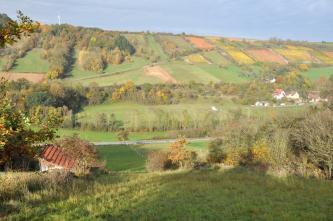 Das Bild zeigt einen zum Hintergrund hin ansteigenden, teils bewaldeten, teils – vor allem rechts – weinbaulich genutzten Hang. Auch aufgeschichtete Steinhügel sind erkennbar.