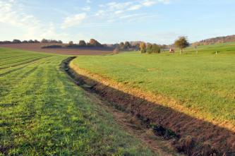 Blick über flache, nach links und rechts leicht ansteigende Grünflächen, die von vorne rechts bis zum Mittelgrund durch einen v-förmigen Graben getrennt sind. Im Hintergrund links ist eine gewölbte braune Ackerfläche erkennbar.