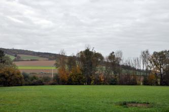 Unter einem wolkigen, grauen Himmel zeigt sich ein nach links ansteigender, auf dem Rücken bewaldeter Hang mit verschiedenen Ackerflächen. Im Vordergrund breitet sich nach einem Gehölzstreifen eine flache Wiese aus.