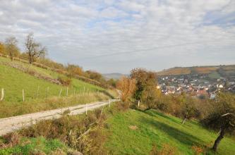 Das Bild zeigt im Vordergrund einen steil nach rechts abfallenden Hang mit Steinhügeln, Grünland und Obstbäumen. Im Hintergrund rechts sind oberhalb einer Siedlung Weinberge zu erkennen.